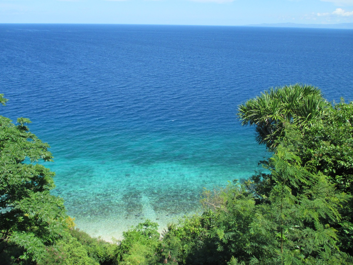 Oslob - the Gateway to Paradise